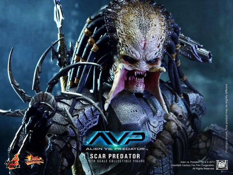 predator_09