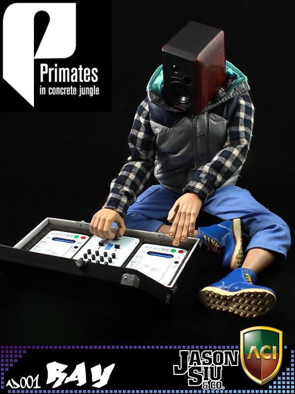 aci-primates-1