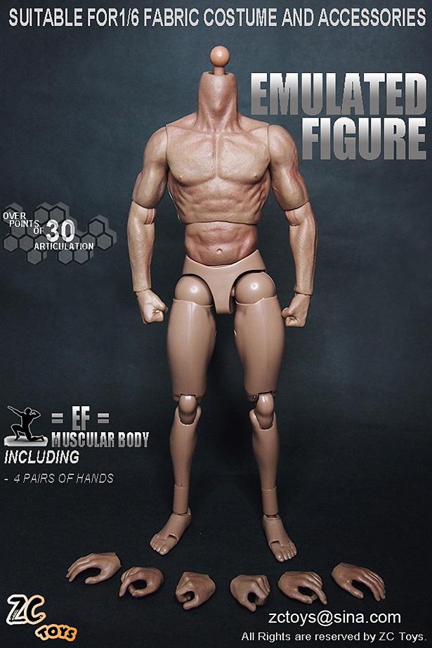 zc-body-5