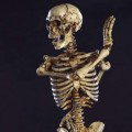 coo-skeleton2-00