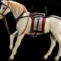 aci-horse-00