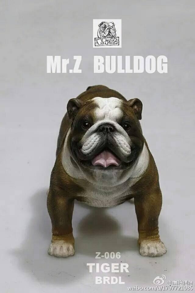 mrZ-bulldog03