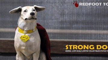 rft-strong-dog00