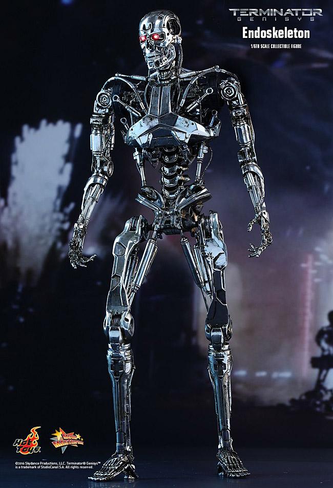ht-endoskeleton01
