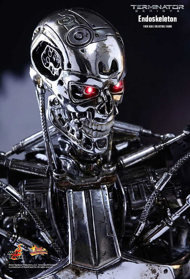 ht-endoskeleton03