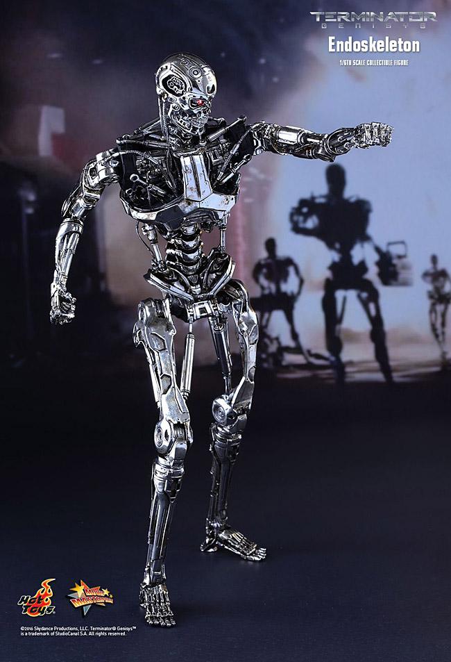 ht-endoskeleton04