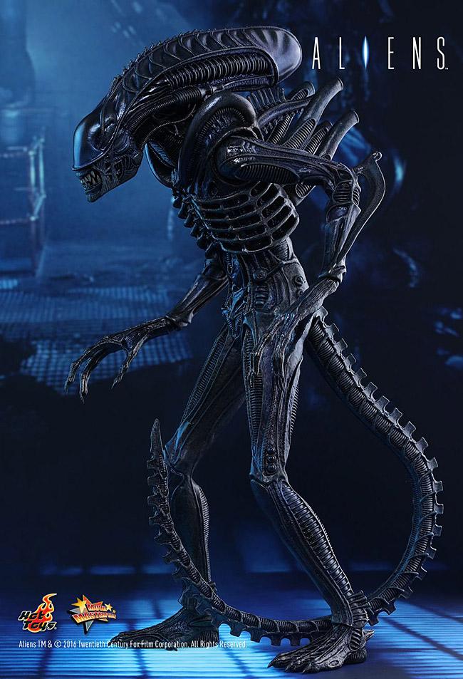 ht-alien-warrior03