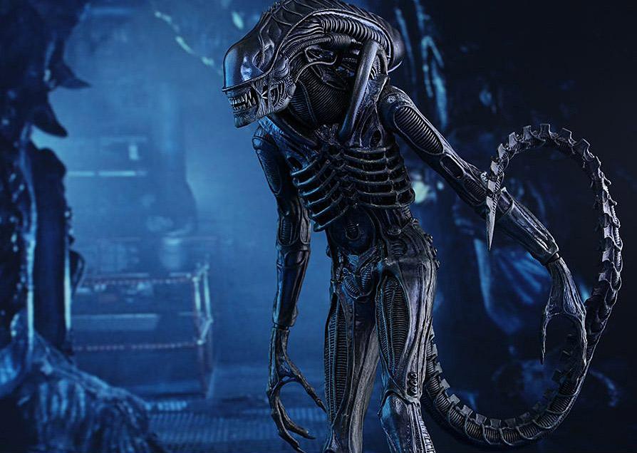 ht-alien-warrior08