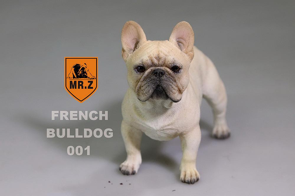 mrZ-frenchBulldog01