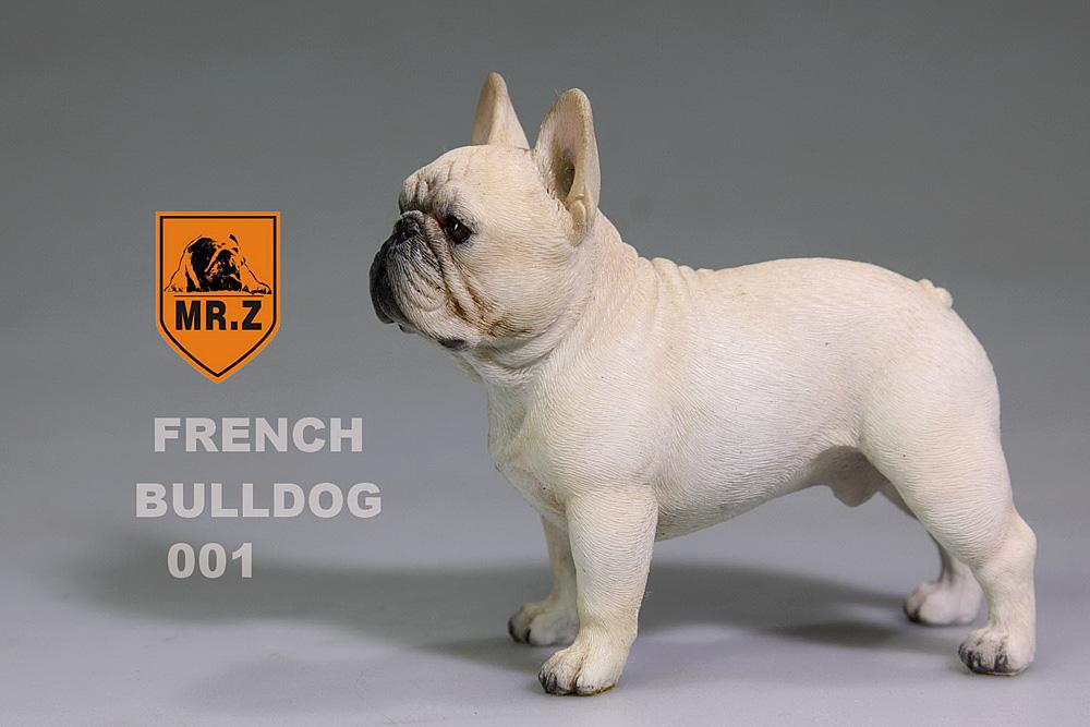 mrZ-frenchBulldog02