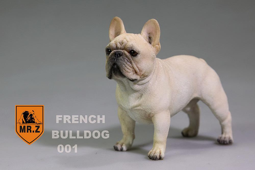 mrZ-frenchBulldog03