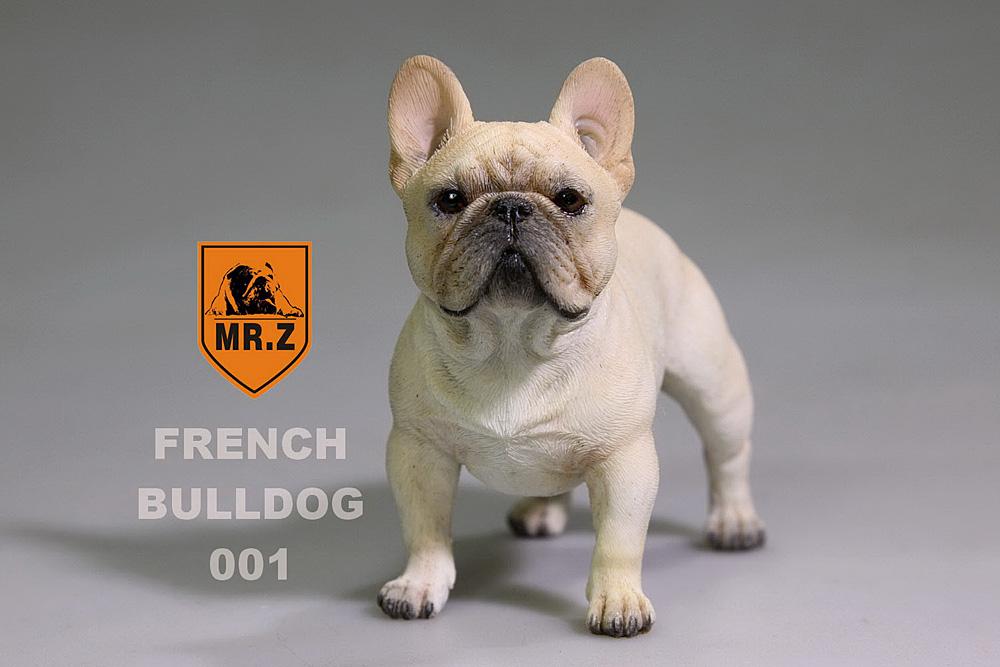 mrZ-frenchBulldog04