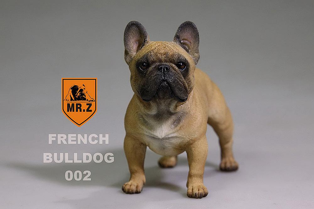 mrZ-frenchBulldog05