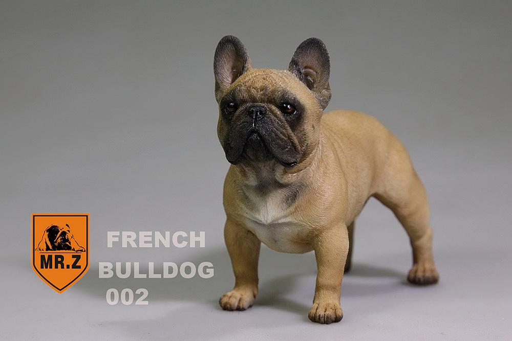mrZ-frenchBulldog06