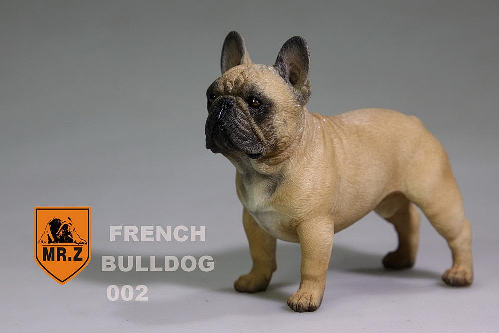mrZ-frenchBulldog07