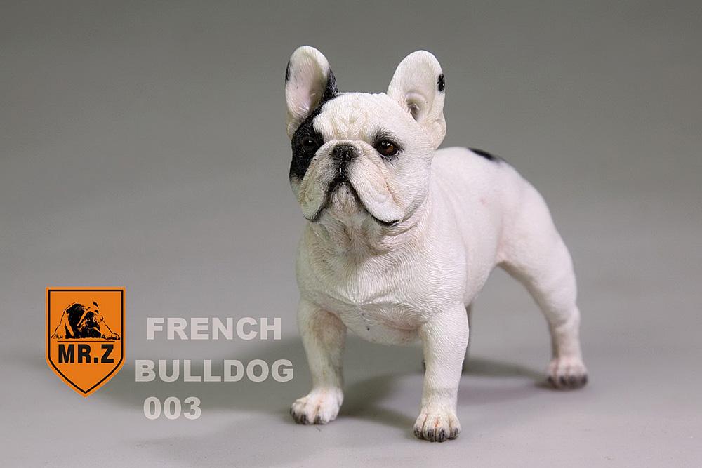mrZ-frenchBulldog09