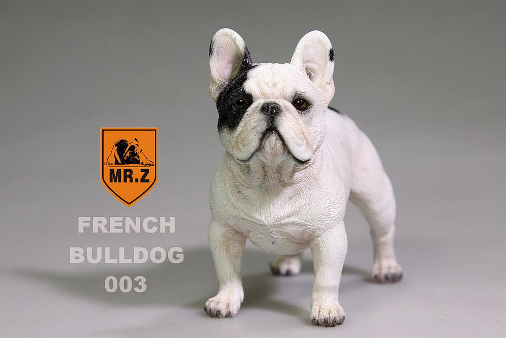 mrZ-frenchBulldog10