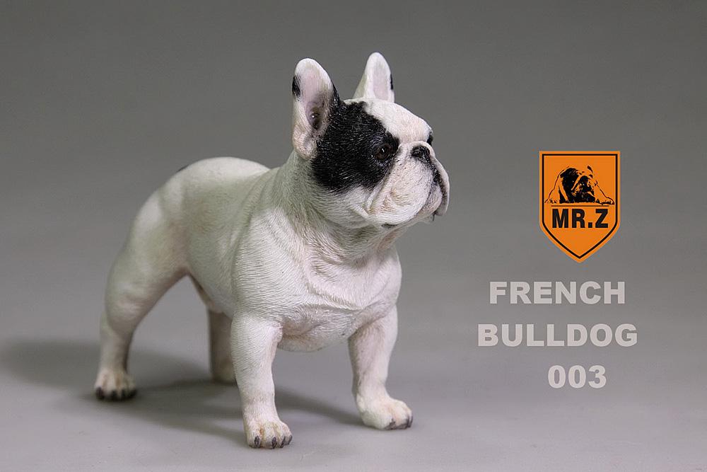 mrZ-frenchBulldog11