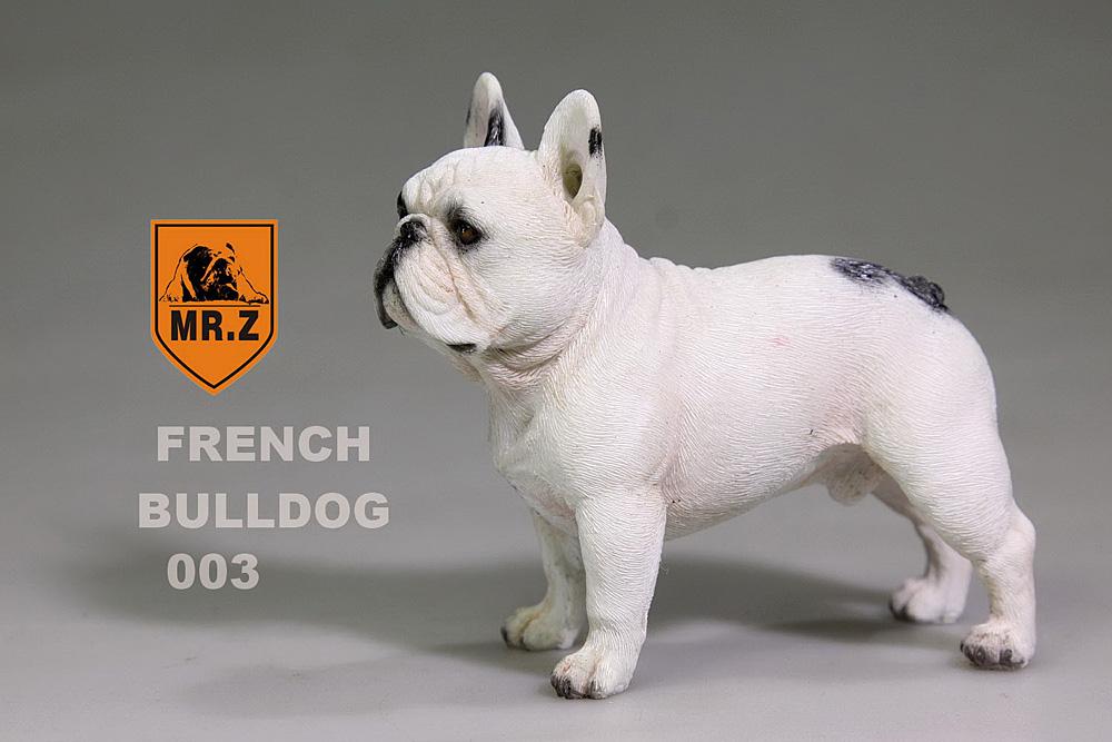 mrZ-frenchBulldog12