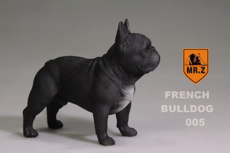 mrZ-frenchBulldog20