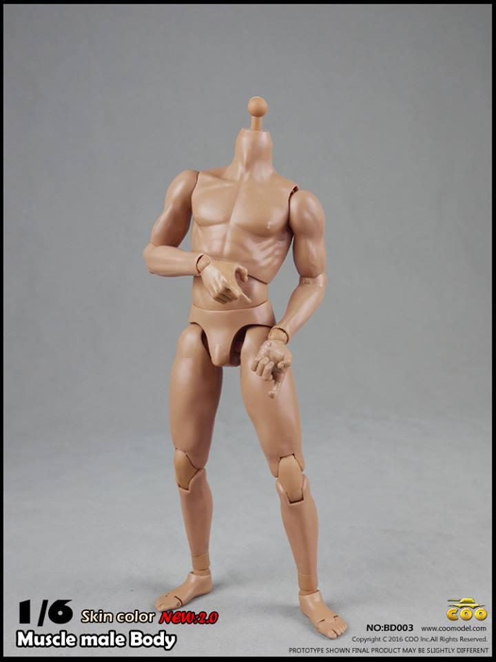 coo-body2-17