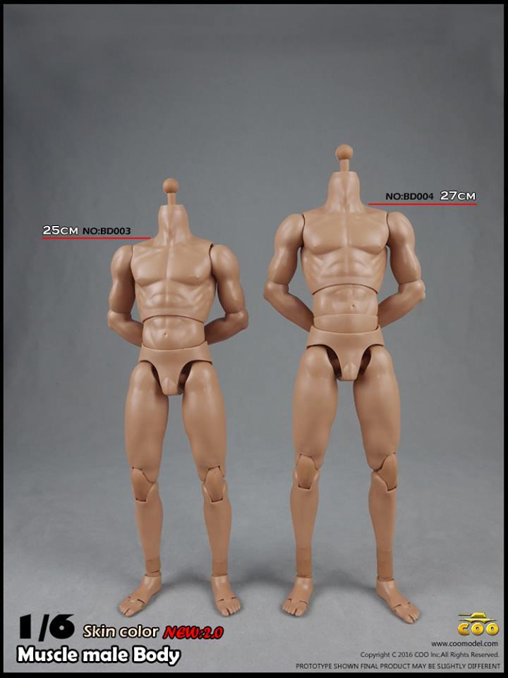 coo-body2-21