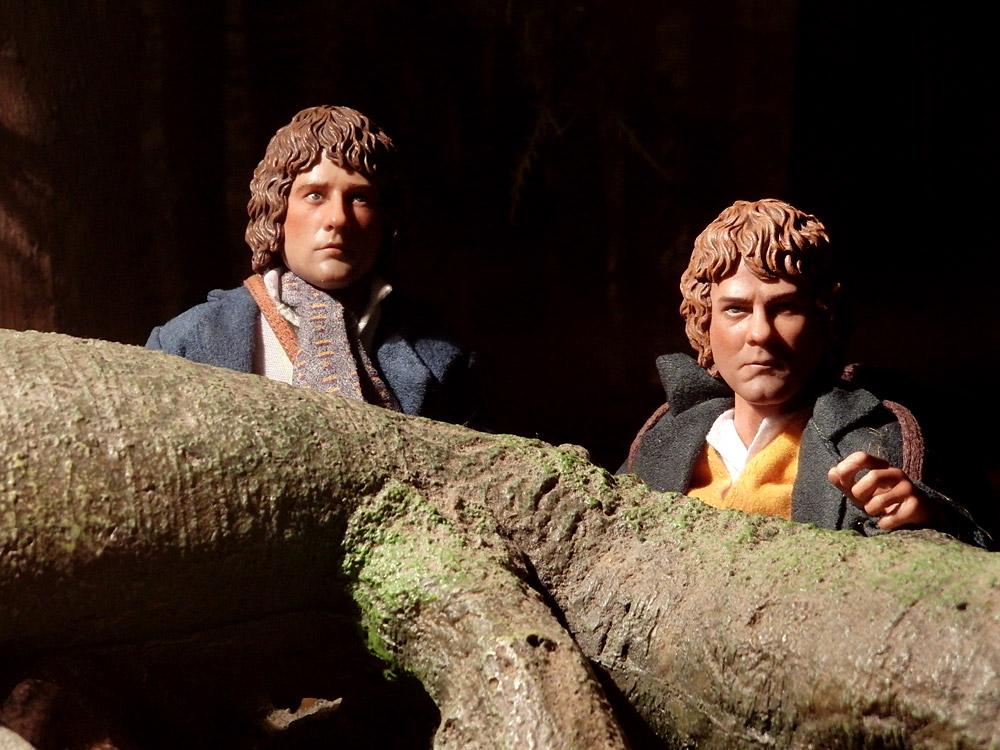 hobbits24