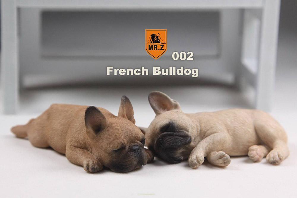 mrZ-bulldogs05