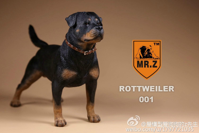 mrz-rotweiler06
