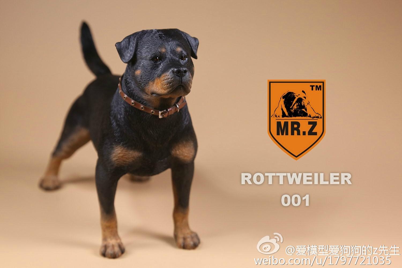 mrz-rotweiler07