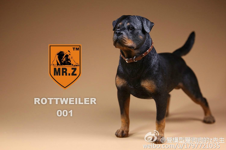 mrz-rotweiler08