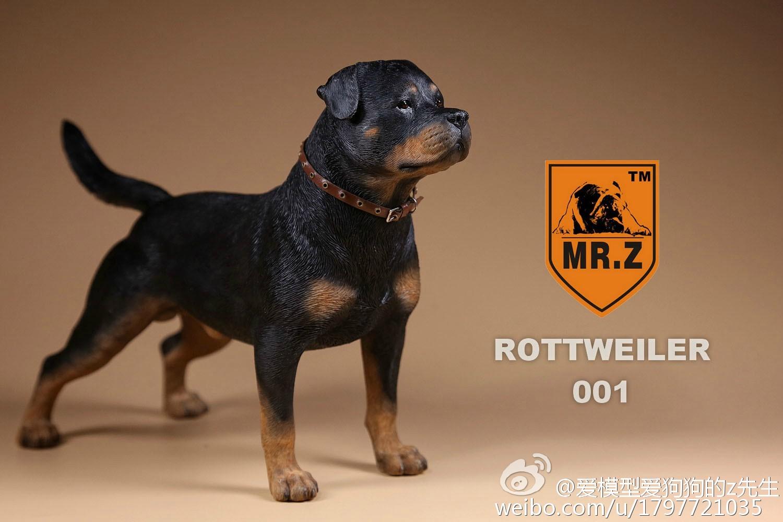 mrz-rotweiler09