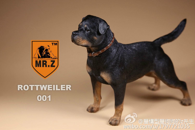 mrz-rotweiler10