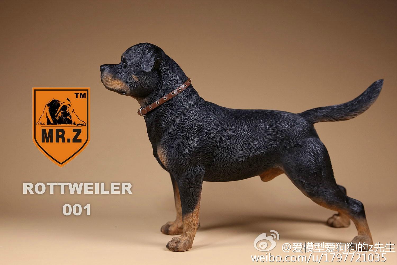 mrz-rotweiler11