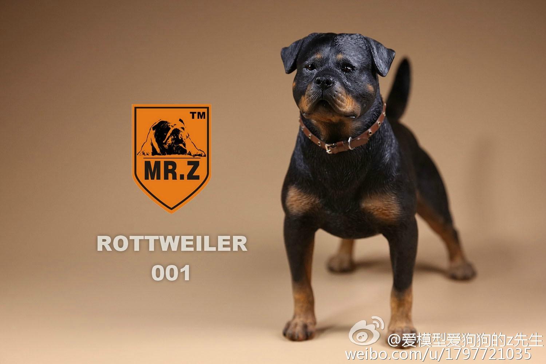 mrz-rotweiler13