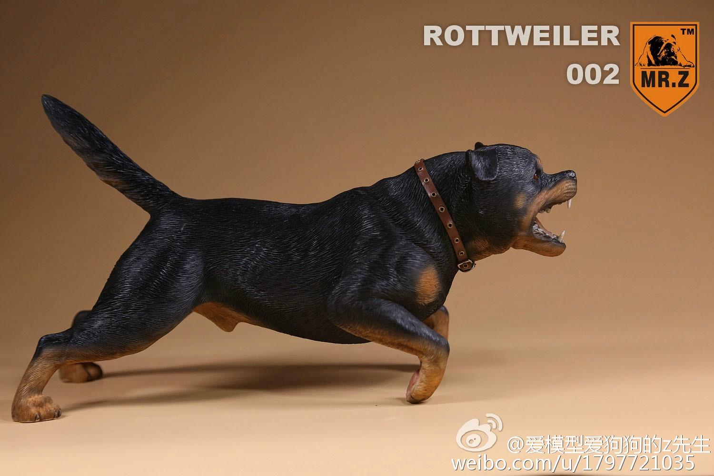 mrz-rotweiler15