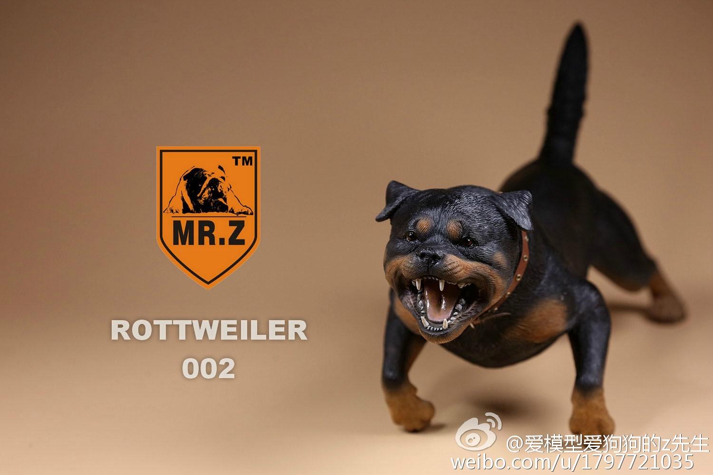 mrz-rotweiler16