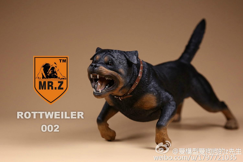 mrz-rotweiler17