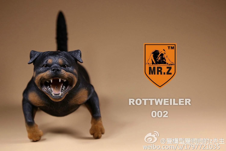 mrz-rotweiler18