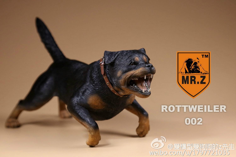mrz-rotweiler19