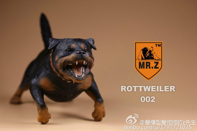 mrz-rotweiler20