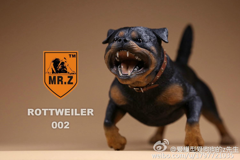 mrz-rotweiler21