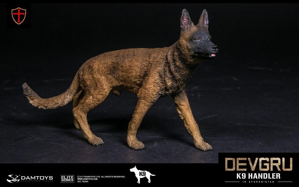 dam-devgru10