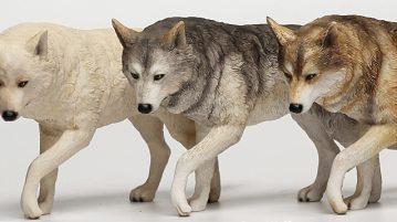 fg-wolf00