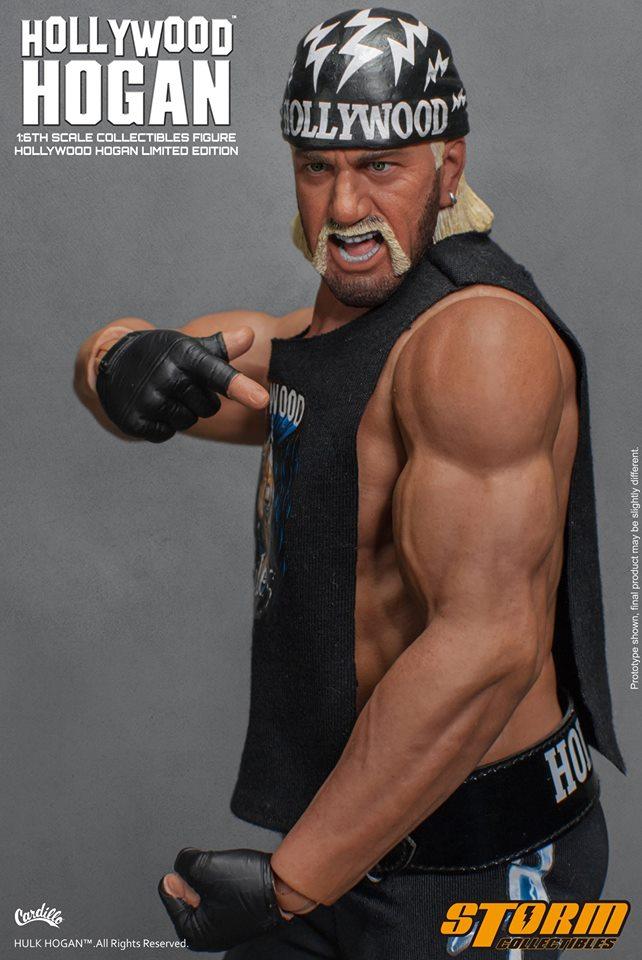 Hollywood Hogan 17