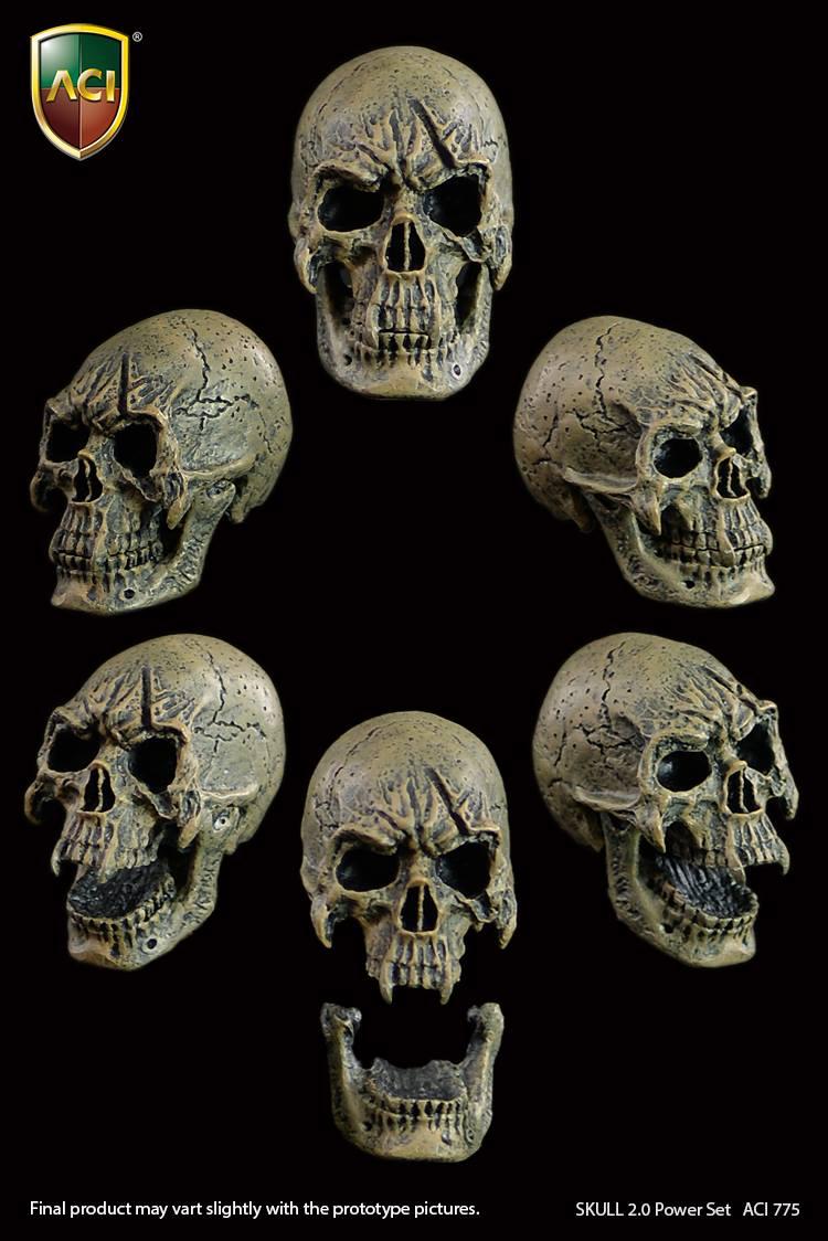 aci-skull01