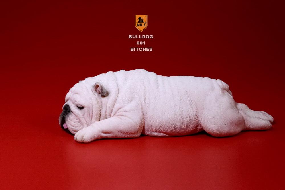 mrz-bulldog05