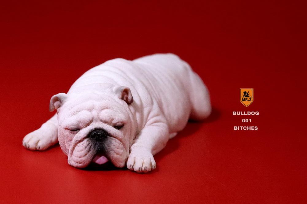 mrz-bulldog06