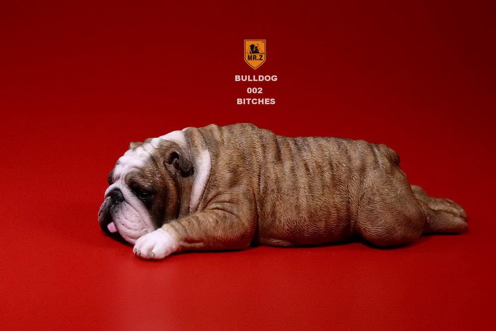 mrz-bulldog10