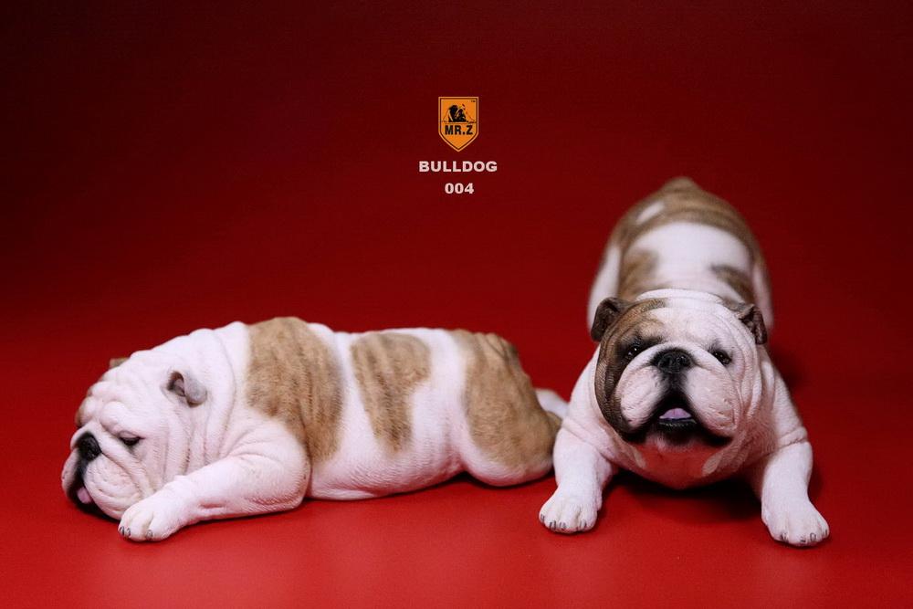mrz-bulldog17